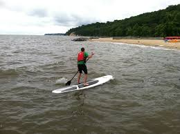 cape cod beach closed after shark bit paddle board 30 yards from