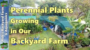 backyard farm garden update air pruning compost plans for the