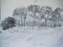 adebanji alade my art my passion for sketching landscape