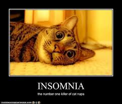 Insomniac Meme - cbt wtf i hate insomnia