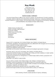 Host Resume Sample by Professional Media Planner Resume Templates To Showcase Your