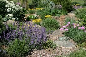 xeriscape gardening colorado colorado xeriscape landscaping