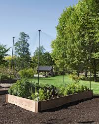 Vegetable Garden Netting Frame by Protection Stakes For Garden Pest Netting Set Of 4 Gardeners Com