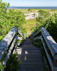 our favorite trails for hiking cape cod brewster by the sea inn