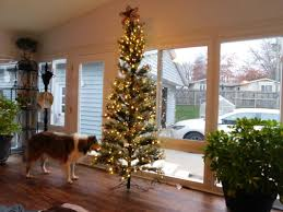 Homes Decorated For Christmas On The Inside D U0026k Home Products Home