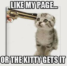 Meme Page - random memes 019 like my page or the kitty gets it comics and memes