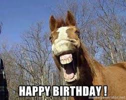 Horse Birthday Meme - horse meme happy birthday horse meme generator holidays