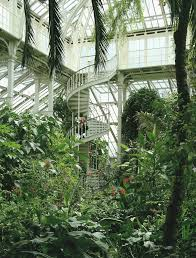 more pics of the temperate house kew gardens my dream house