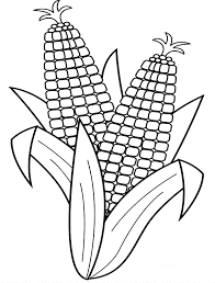 corn coloring pages u2013 vonsurroquen