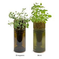 indoor kitchen garden ideas indoor herb garden kit gardening ideas