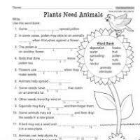 worksheets for grade 3 on plants makeup aquatechnics biz