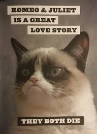 Grumpy Cat Yes Meme - grumpy cat a grumpy book by grumpy cat