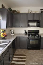 what color of cabinets go with black appliances oak cabinets ideas on foter