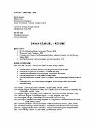 Bold Resume Template by Indeed Resume Template Business Template