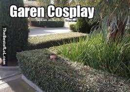 Garen Memes - garen cosplay thebestoflol com league of legends stuff news