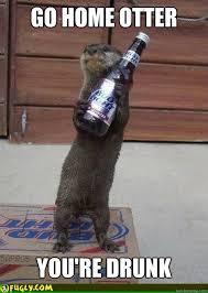 Otter Meme - otter meme drunk google search otters pinterest otter meme