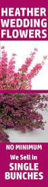 best 25 wholesale wedding flowers ideas on pinterest