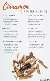 scented indoor l oil 5 essential oil blends to make your house smell like fall house