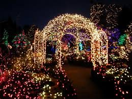 christmas botanical gardens christmas lights amazing festival of