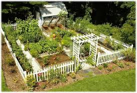 attractive vegetable garden fence video and photos