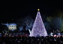 crocker park tree lighting 2017 watch national christmas tree lighting fox8 com