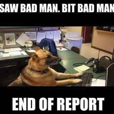 Law Dog Meme - image result for funny police dog memes law pinterest funny
