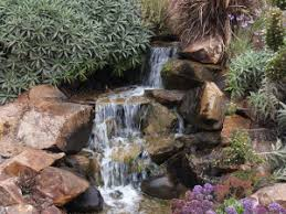 Waterfall In Backyard Romance Your Wife With A Backyard Custom Waterfall San Diego