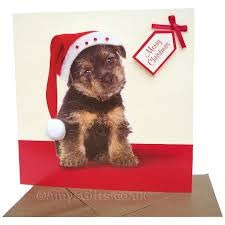 photo christmas cards dog theme chrismast cards ideas
