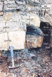 the frasnian u2013famennian mid late devonian boundary in the type