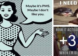 Funny Women Memes - funny memes about women and pms slap laughter
