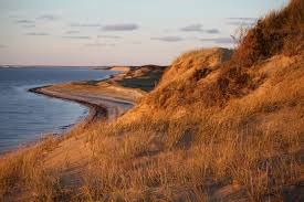 top 5 secret best cape cod beaches the platinum pebble
