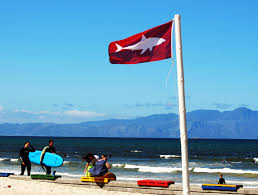 Beach Red Flag All You Need To Know About Shark Spotters Shark Zone Blog