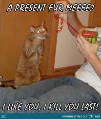 Funny Christmas Cat Memes - merry christmas cat by ifreet meme center