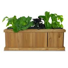 Window Box For Herbs Pennington 40 In X 12 In Wood Planter Box 540 The Home Depot