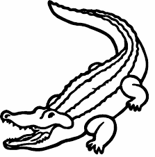 alligator 28 animals u2013 printable coloring pages