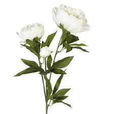 Faux Peonies Faux Peony Duchesse De Nemours Flower Stem Oka