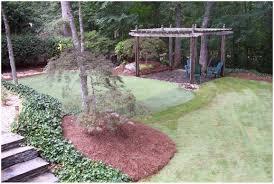 backyards terrific diy back yard putting green 92 backyard