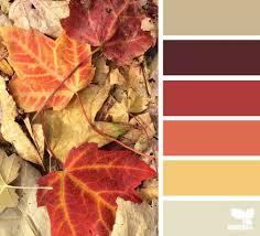 1529 best color inspiration images on pinterest color palettes