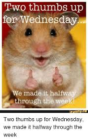 Funny Memes About Wednesday - two thumbs up for wednesday we made it halfway through the week