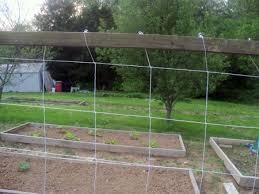 Garden Netting Trellis Gardendesk Building A Trellis For The Cucumbers