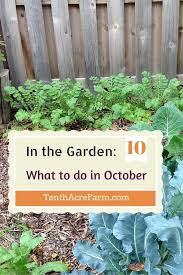 Fall Vegetable Garden Ideas by 83 Best October Gardening Images On Pinterest Flowers Gardens