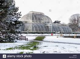 the palm house snow covered glasshouse at kew gardens in winter