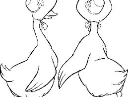 st louis cardinals logo coloring pages clipart free clip art