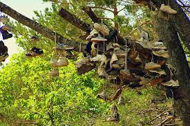the shoe tree legend of michigan michigan s otherside