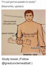 Study Memes - i m just gonna upstairs to study meanwhile upstairs glenohumeral