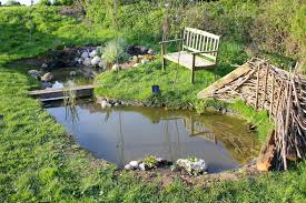 native uk pond plants how to attract wildlife into the garden with a pond the garden of