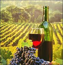 Greek Wine Cellars - 68 best greek wine images on pinterest greece vintage wine and