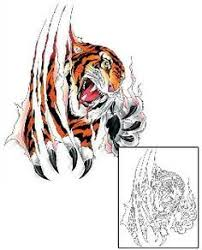 tiger ripping through skin search projects to