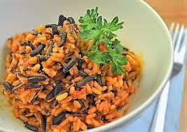 insectes dans la cuisine un chef à domicile pour y cuisiner des insectes degust co