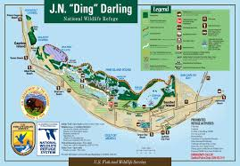 Sanibel Island Map Wildbird On The Fly U0027ding U0027 Darling U0027s Role In Nwf U0027s 75th Anniversary